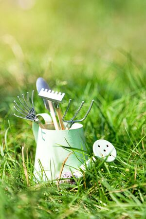 Watering can and garden tools on grass in summer
