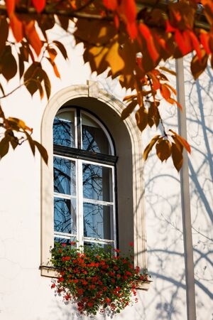 Autumn mood. Window of old building with red flower ande yellow leaves. Budapest, Hungary