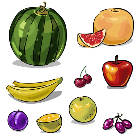 Set of fruit with watermelon and grapefruit hand-drawn isolated on a white background