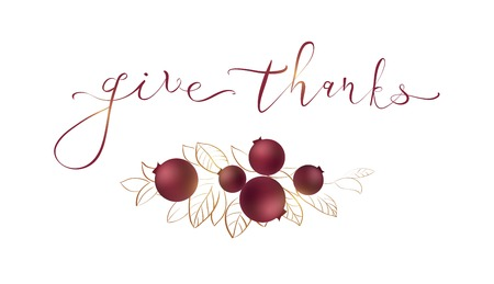 Words give thanks - Thanksgiving concept. Card for Thanksgiving Day on white background with cranberry and leaves. Vector illustration