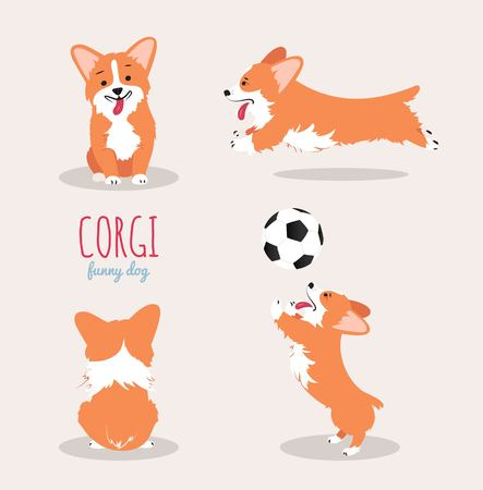 Cute Welsh Corgi Pembroke cartoon set. Vector illustration  イラスト・ベクター素材