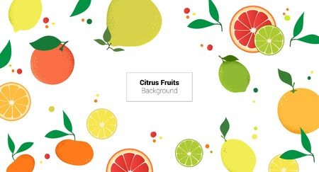 Colorful fruits citrus on white background. Vector illustration