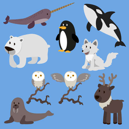 Arctic animals flat vector illustration. Cartoon animals hand drawn pack