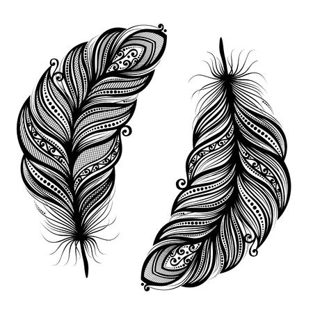 arte abstracto: Peerless decorativo de la pluma Vectores