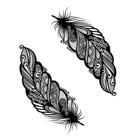 pluma blanca: Peerless decorativo de la pluma Vectores