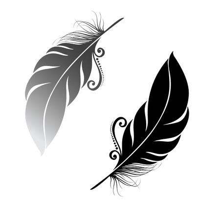 Peerless Decorative Feather   Stock Illustratie