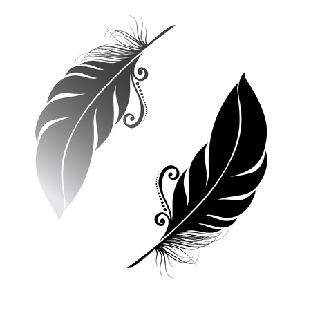 Peerless Decorative Feather Stock Vector - 26470439