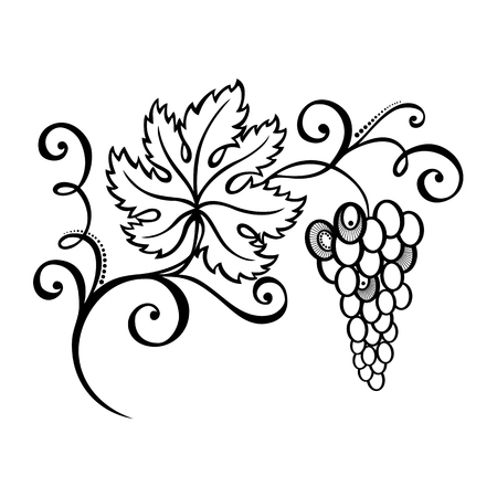 art deco border: Vector Beautiful Branch of Grapes