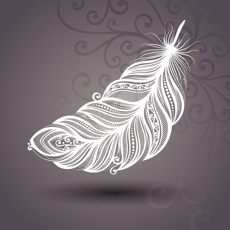 a feather: Vector Template with Peerless Feather on Ornate Background  Collection Illustration