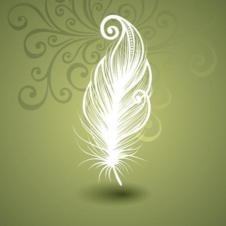 Vector modèle avec la plume Peerless fleuri Collection de fond Vecteurs