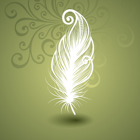 Vector Template with Peerless Feather on Ornate Background  Collection Vector