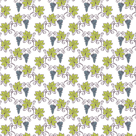 Seamless Floral Pattern  Vector   Hand Drawn Texture with Grape