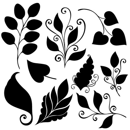 Vector Set of Leaves  Stencils Isolated on White Background Vector