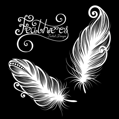 plume: Vector Peerless Decorative Feather, Tribal design, Tattoo Illustration