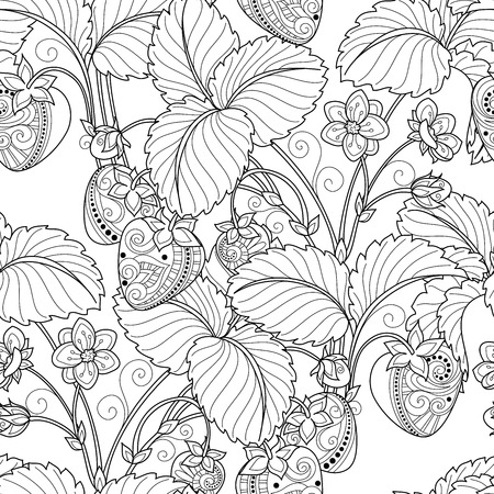 colouring: Vector Seamless Monochrome Fruit Pattern. Hand Drawn Decorative Strawberry