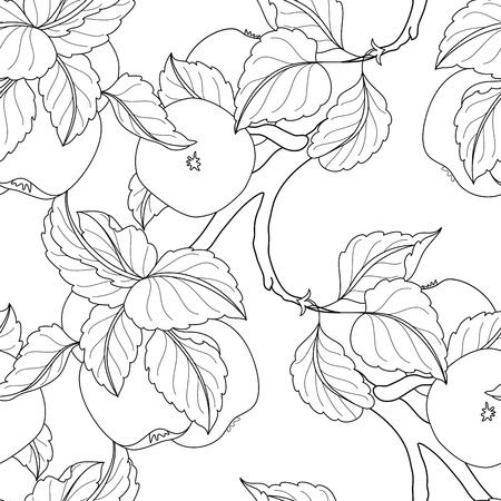 apple orchard: Vector Seamless Monochrome Fruit Pattern. Hand Drawn Decorative Branch of Apple Tree