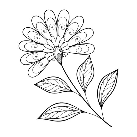 Vector Beautiful Monochrome Contour Flower, Floral Design Element Vector Illustration
