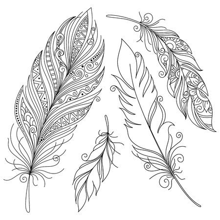 plumas de pavo real: Vector Peerless decorativo pluma, diseño tribal, tatuaje Vectores