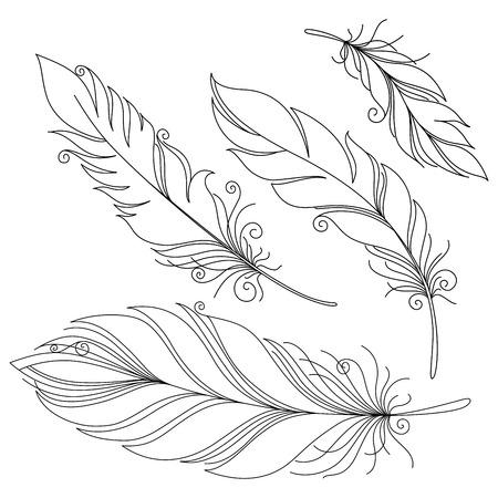 ベクター比類のない装飾的な羽、部族のデザインのタトゥー