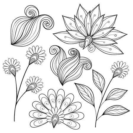 Set of Monochrome Contour Flowers and Leaves, Floral Design Elements