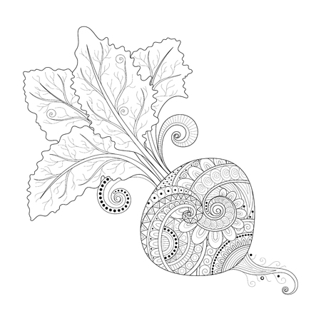 Vector Monochrome Decorative Beet with Top. Hand Drawn Ornate Vegetable with Beautiful Pattern