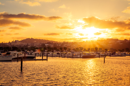Golden hour over marina in central Auckland, New Zealand