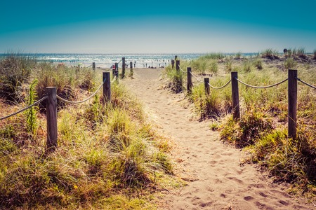 Vintage photo of a sandy pathway with grass reeds and wooden posts on each side leading to a beautiful bay with calm blue sea