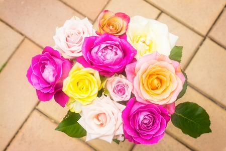 A bouquet of soft colored roses