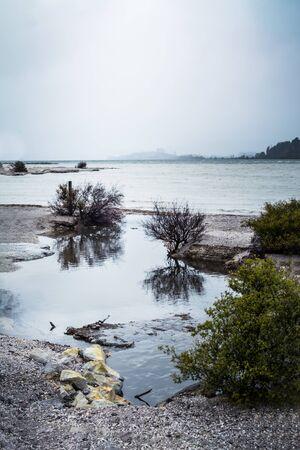 Rainy winter day at lake Rotorua. Coastline shrubbery over rocks.