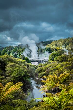 Hot steam from geysers rising over mountains near Rotorua, New Zealand. Winter day at Te Whakarewarewa Thermal Reserve Stok Fotoğraf