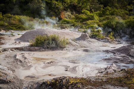 Bubbling hot mud pool. Close up. Rotorua, New Zealand