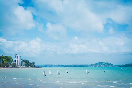 Small sailing boats scattered over calm waters of Kohimarama Bay 写真素材