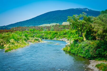 Tongariro River on a sunny summer day