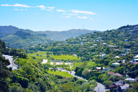Green valley surrounded by slopes covered with cosy suburbuan houses in Wellington, New Zealand.