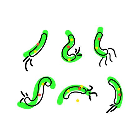 Bacterial microorganism. Micro-organisms, bacteria, viruses, fungi, protozoa under the rejuvenating glass,magnifier.Vector flat cartoon illustration icon Illustration