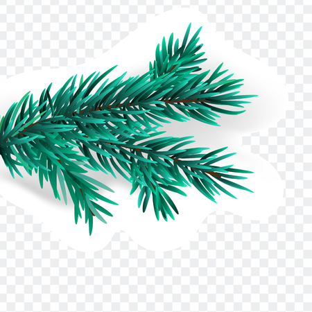 Christmas spruce branch isolated on white background.  isolated on transparant background Stockfoto - 113300156