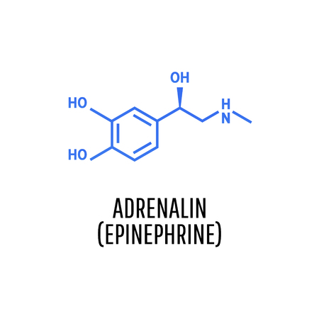 Adrenaline (adrenalin, epinephrine) molecule isolated on white background.  Vector icon.