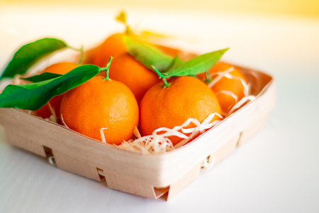 Fresh picked mandarins on a sunny day Stock Photo