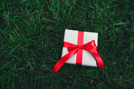 Red little gift box on spring green grass lawn background, above view