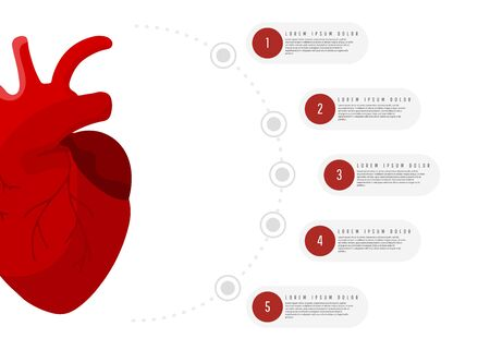 Human anatomy illustration Medical concept infographics of red man heart organ with round elements with text on white background Stock Photo