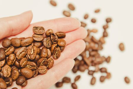 Dark roasted coffee beens in the farmer s hand with macro view. Quality control before the beans are packaged and shipped globally. flat lay, minimal Stock Photo