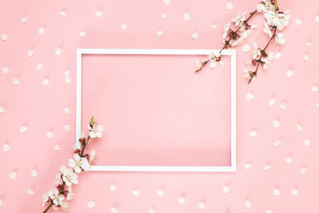 Flowers composition. Frame made of pink flowers and leaves. Top view, flat lay. Banco de Imagens