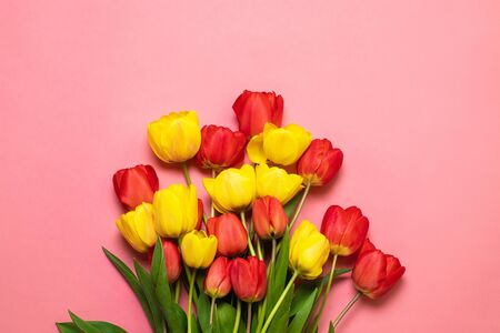 Mix of spring tulips flowers on pink background.