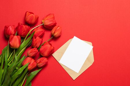 Spring red tulips on a white background and an envelope