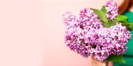 Composition from a spring bouquet of lilacs. Female hands hold a bouquet of lilacs on a pink background. Stok Fotoğraf