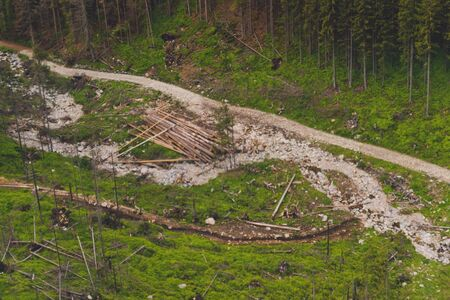 Illegal logging. Beautiful view of Zakopane Tatra Mountains Kasprowy Wierch in the summer. Travel and tourism concept.