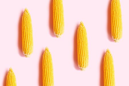 Creative portrait of fresh yellow boiled corn on a pink background.