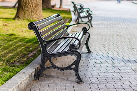 City wooden bench with metal railing in the park on a sunny day. Urban landscape bench with wrought iron legs.