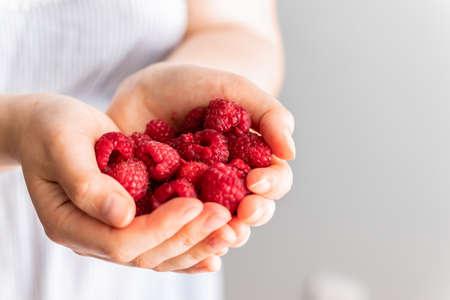 Hand with red raspberries.Raspberries in the hand. Freshly harvest. Eating, dieting, vegetarian food concept Stok Fotoğraf