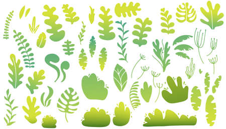 Spring collection green garden vegetation bushes and plants designs icon set. Vector illustration